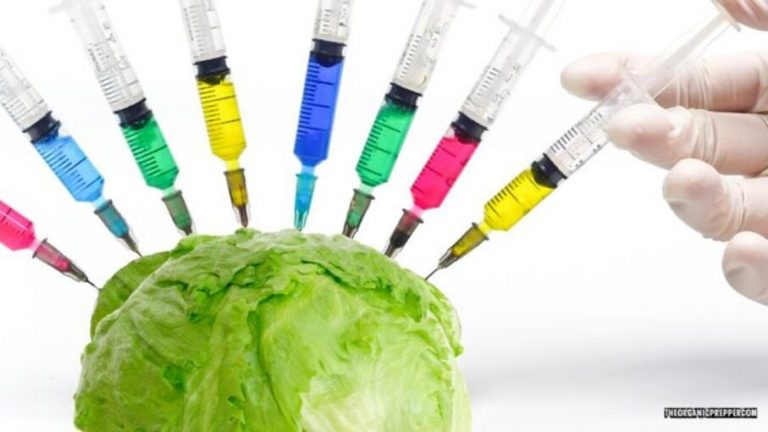 Why do they want to put mRNA Technology in Lettuce?